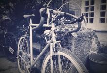 Jalgrattad...